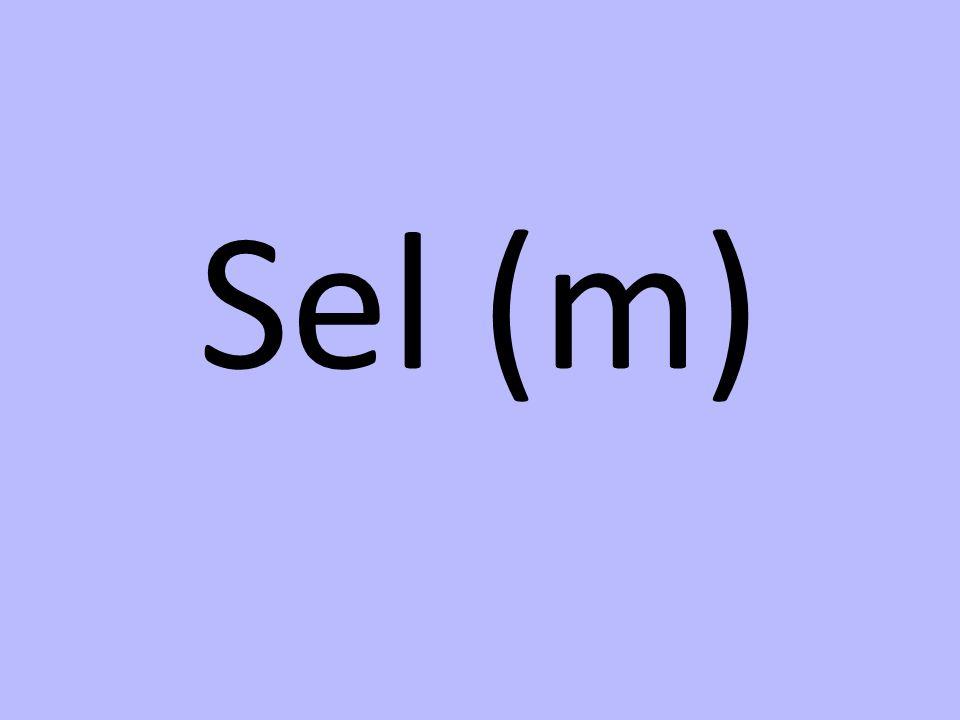 Sel (m)