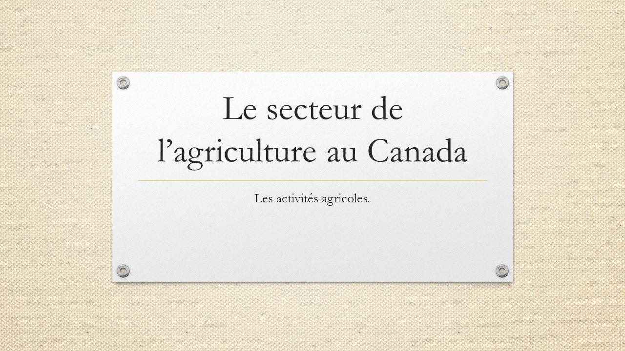 Le secteur de l'agriculture au Canada Les activités agricoles.