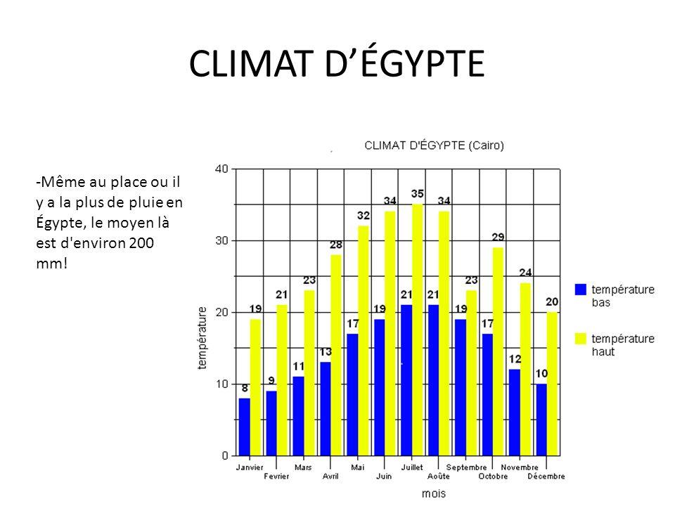 CLIMAT D'ÉGYPTE -Même au place ou il y a la plus de pluie en Égypte, le moyen là est d'environ 200 mm!