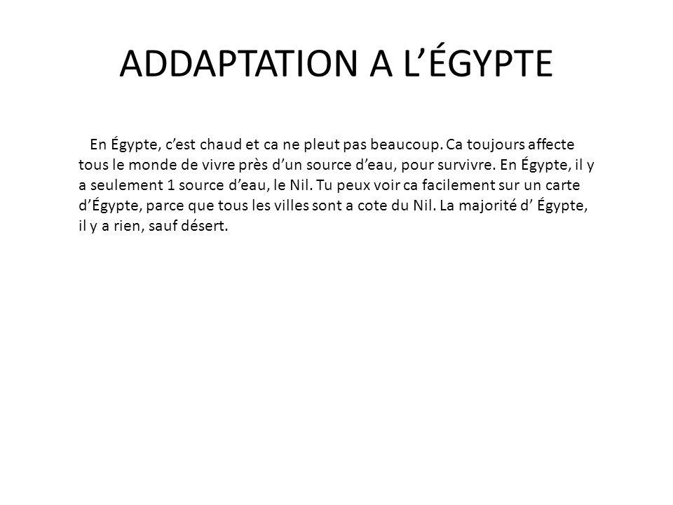 ADDAPTATION A L'ÉGYPTE En Égypte, c'est chaud et ca ne pleut pas beaucoup. Ca toujours affecte tous le monde de vivre près d'un source d'eau, pour sur
