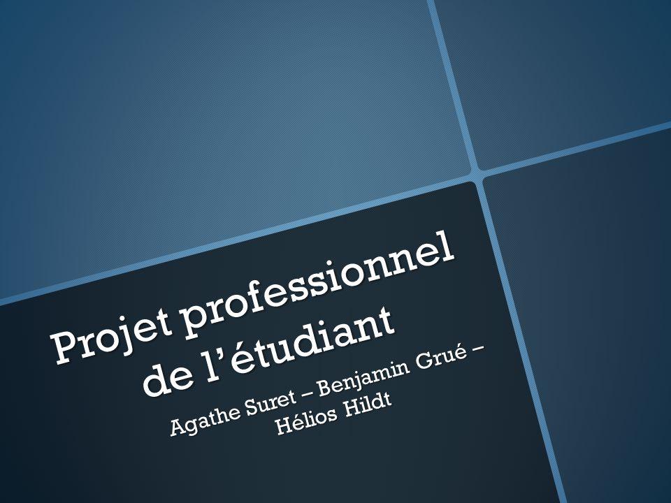 Projet professionnel de l'étudiant Agathe Suret – Benjamin Grué – Hélios Hildt