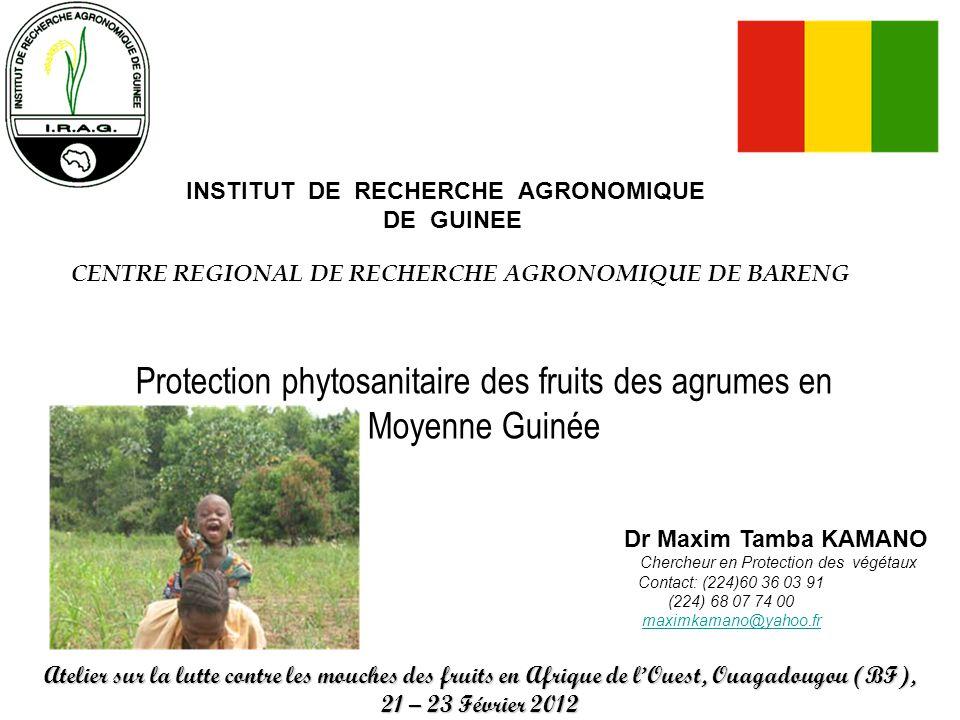 INSTITUT DE RECHERCHE AGRONOMIQUE DE GUINEE CENTRE REGIONAL DE RECHERCHE AGRONOMIQUE DE BARENG Protection phytosanitaire des fruits des agrumes en Moy