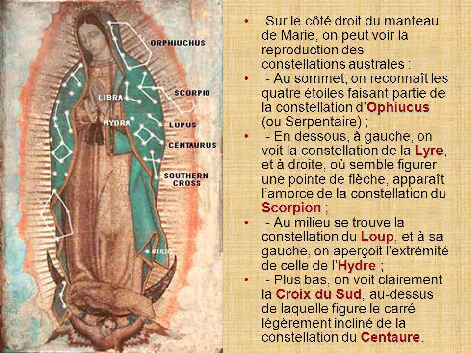 8.8. Les étoiles figurant sur le manteau de Marie reflètent la configuration exacte qui était la leur dans le ciel de Mexico le jour du miracle :