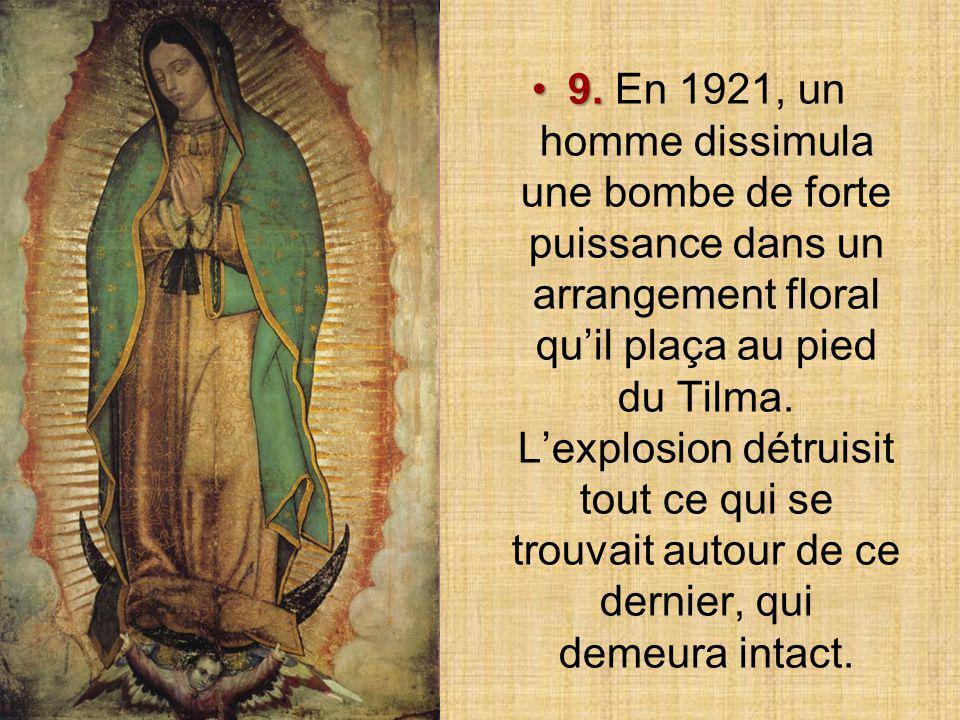 Sur le côté gauche du manteau de la Vierge, on reconnaît les constellations de l'hémisphère Nord : Berger Chevelure de Bérénice Chiens de ChasseThuban
