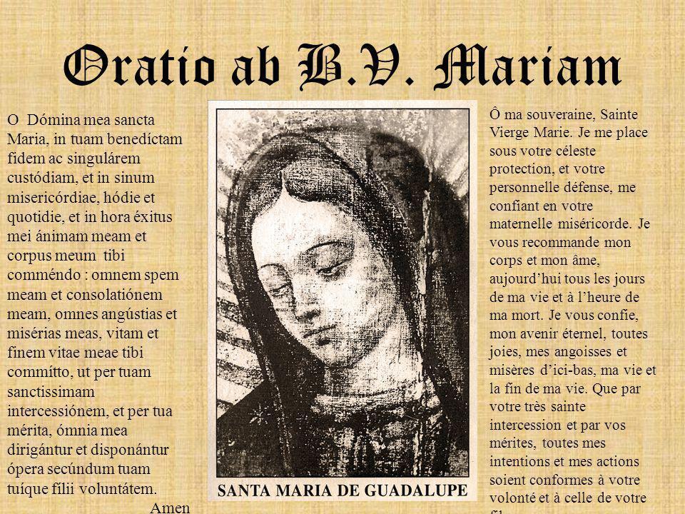 Le présent exposé a pour unique objet de vous prouver que la Vierge sera toujours avec vous, chaque fois que vous aurez besoin d'elle, qu'elle ne vous