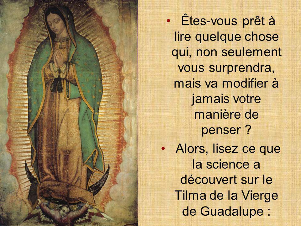 Découvertes sur le Tilma de la Vierge de Guadalupe IMPÉRATRICE DES AMÉRIQUES André Fernando García cliquezn'importe où sur la page pour continuer Déco