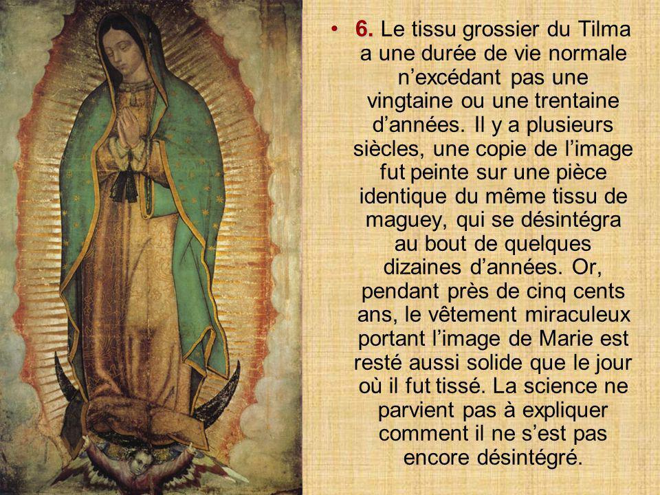 Le présent exposé a pour unique objet de vous prouver que la Vierge sera toujours avec vous, chaque fois que vous aurez besoin d'elle, qu'elle ne vous abandonnera jamais et que vous serez toujours son fils ou sa fille particulièrement aimé(e).
