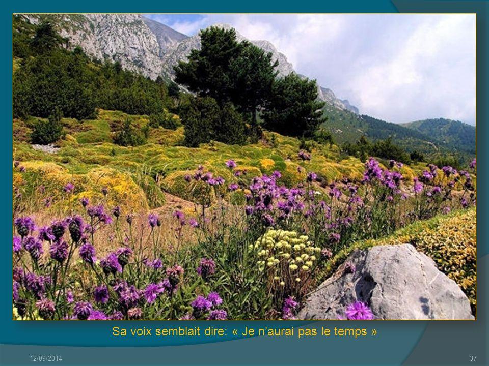 12/09/201436 Quelques mots d'amour sur un air de printemps.