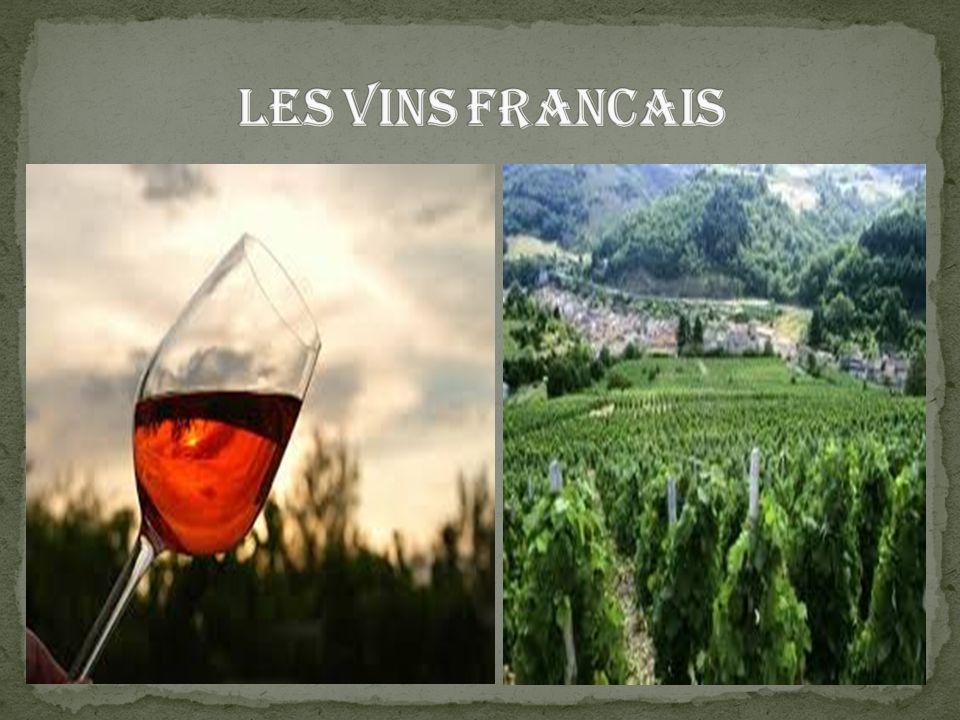 Vous allez rapidement comprendre que pour faire un bon vin, il faut une bonne matière première, donc un bon raisin.