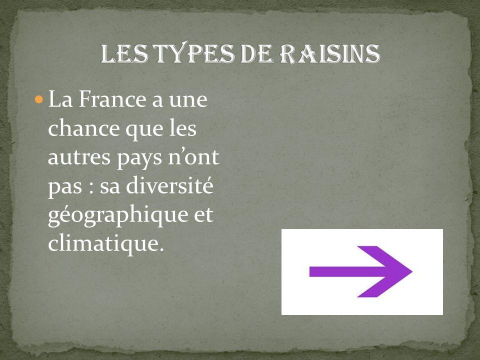 La France a une chance que les autres pays n'ont pas : sa diversité géographique et climatique.