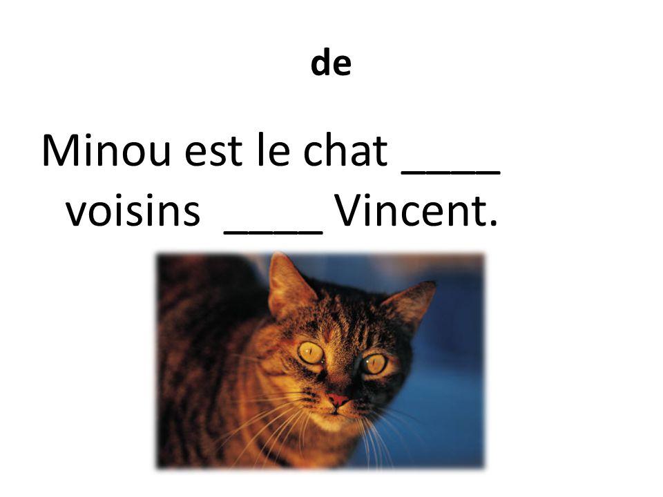 de Minou est le chat ____ voisins ____ Vincent.