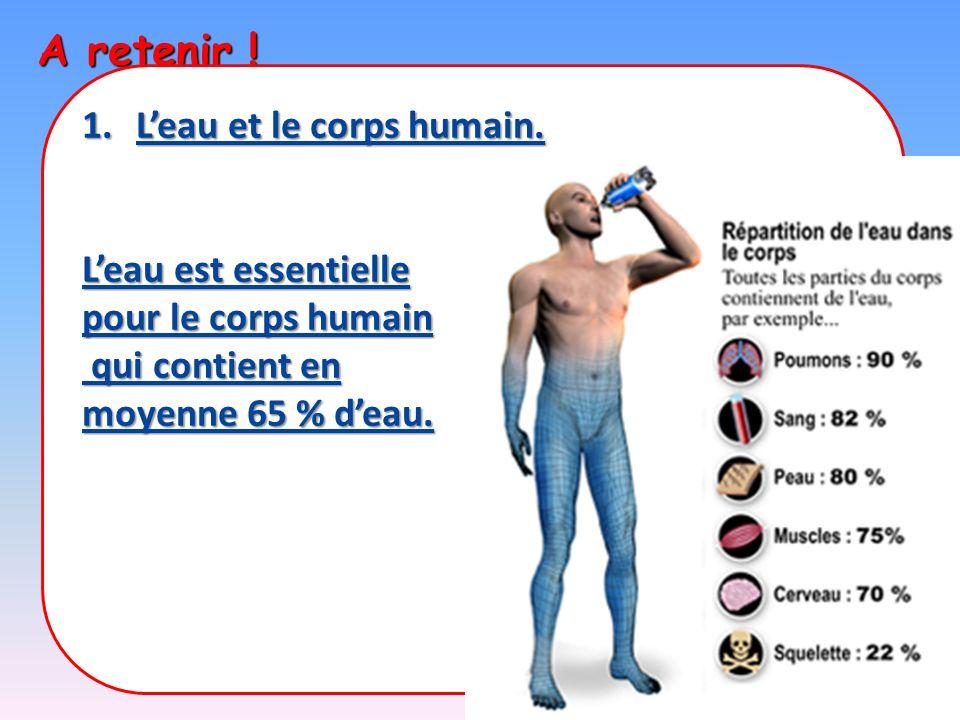 A retenir ! 1.L'eau et le corps humain. L'eau est essentielle pour le corps humain qui contient en qui contient en moyenne 65 % d'eau.