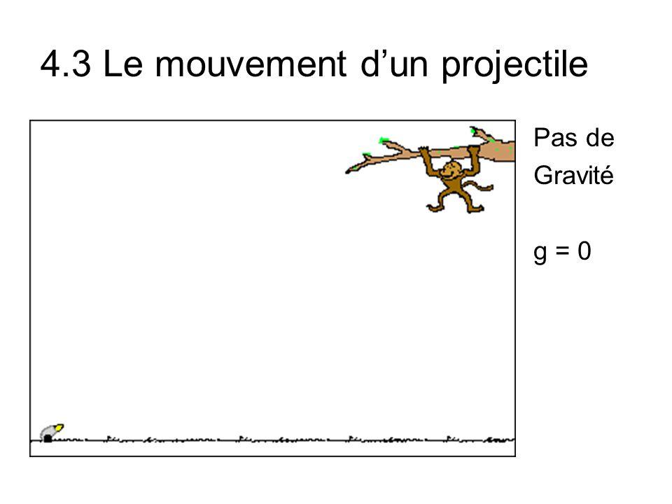 Pas de Gravité g = 0