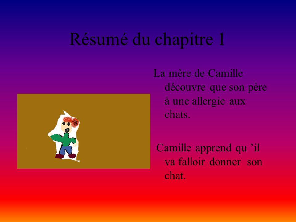 Résumé du chapitre 1 La mère de Camille découvre que son père à une allergie aux chats.