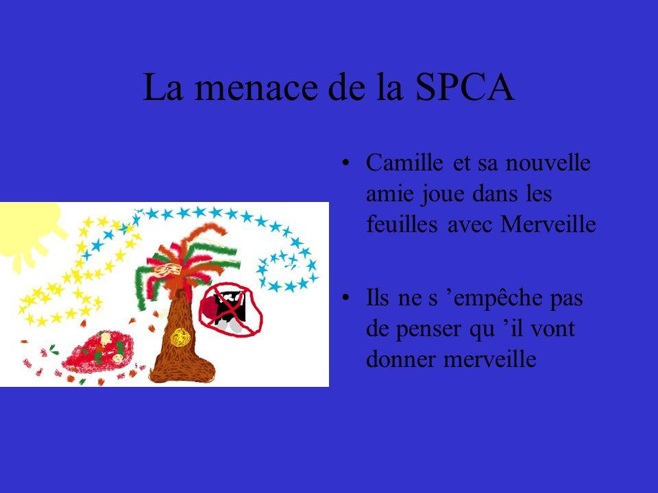 La menace de la SPCA Camille et sa nouvelle amie joue dans les feuilles avec Merveille Ils ne s 'empêche pas de penser qu 'il vont donner merveille
