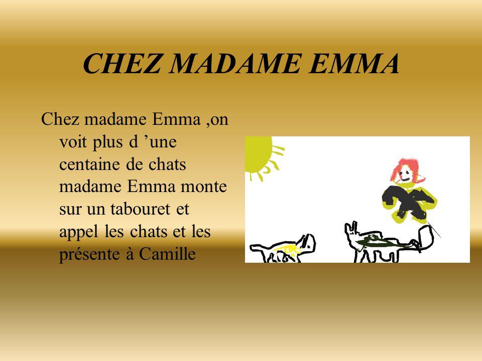 CHEZ MADAME EMMA Chez madame Emma,on voit plus d 'une centaine de chats madame Emma monte sur un tabouret et appel les chats et les présente à Camille