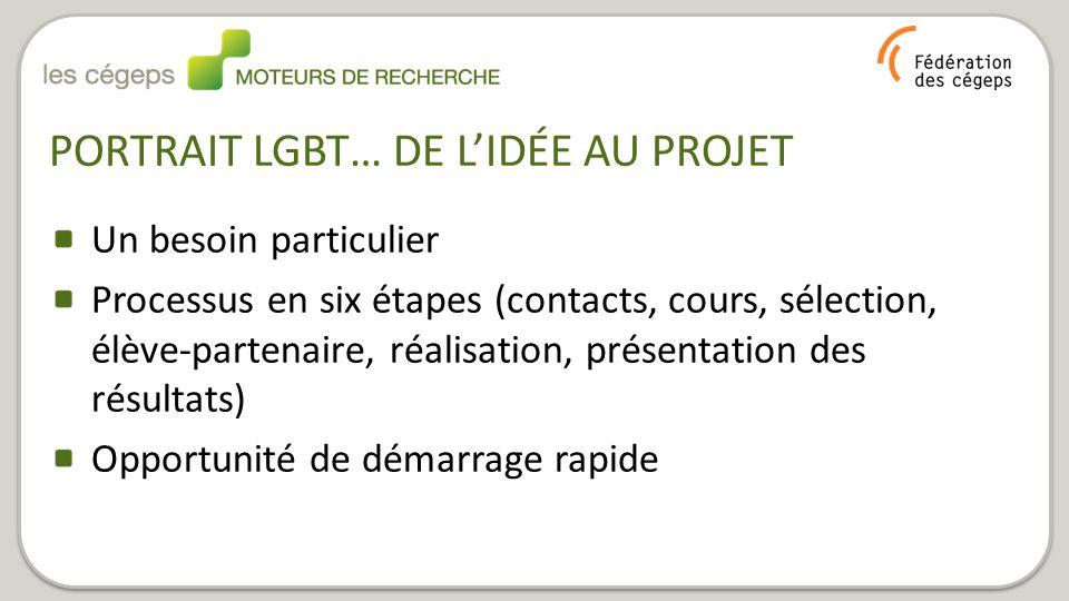 PORTRAIT LGBT… DE L'IDÉE AU PROJET Un besoin particulier Processus en six étapes (contacts, cours, sélection, élève-partenaire, réalisation, présentation des résultats) Opportunité de démarrage rapide