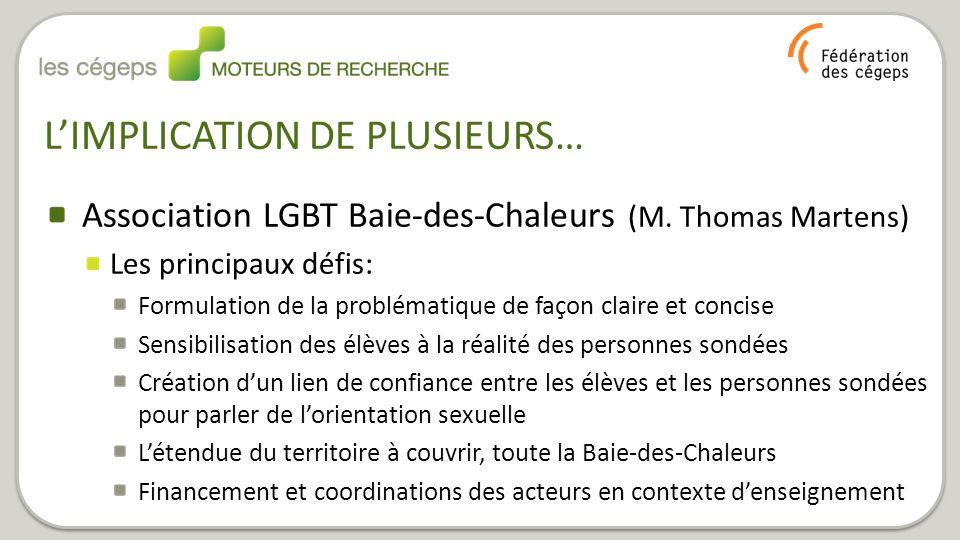 Association LGBT Baie-des-Chaleurs (M. Thomas Martens) Les principaux défis: Formulation de la problématique de façon claire et concise Sensibilisatio