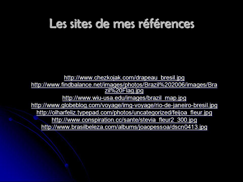 Les sites de mes références http://www.chezkojak.com/drapeau_bresil.jpg http://www.findbalance.net/images/photos/Brazil%202006/images/Bra zil%20Flag.j