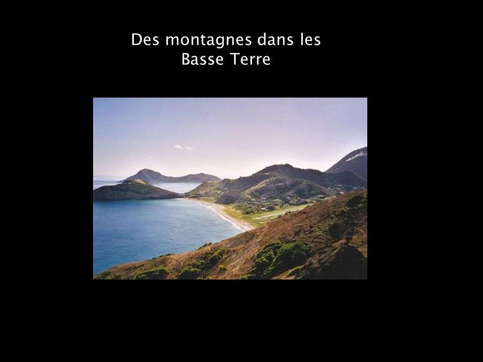 Des montagnes dans les Basse Terre