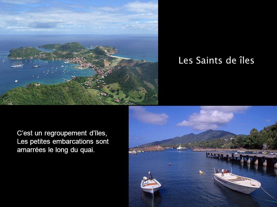 Les Saints de îles C'est un regroupement d'îles, Les petites embarcations sont amarrées le long du quai.