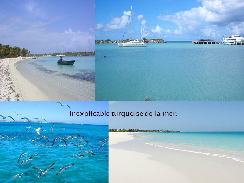Inexplicable turquoise de la mer.
