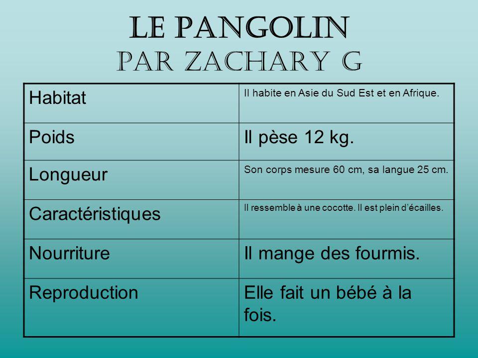 Le PANGOLIN par Zachary G Habitat Il habite en Asie du Sud Est et en Afrique.