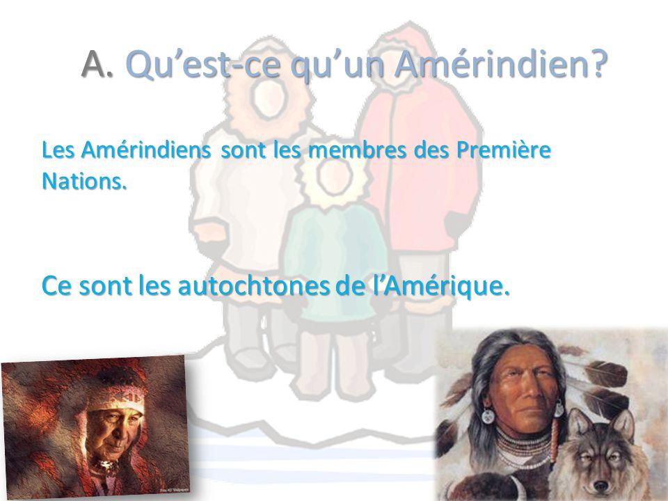 A. Qu'est-ce qu'un Amérindien? Les Amérindiens sont les membres des Première Nations. Ce sont les autochtones de l'Amérique.
