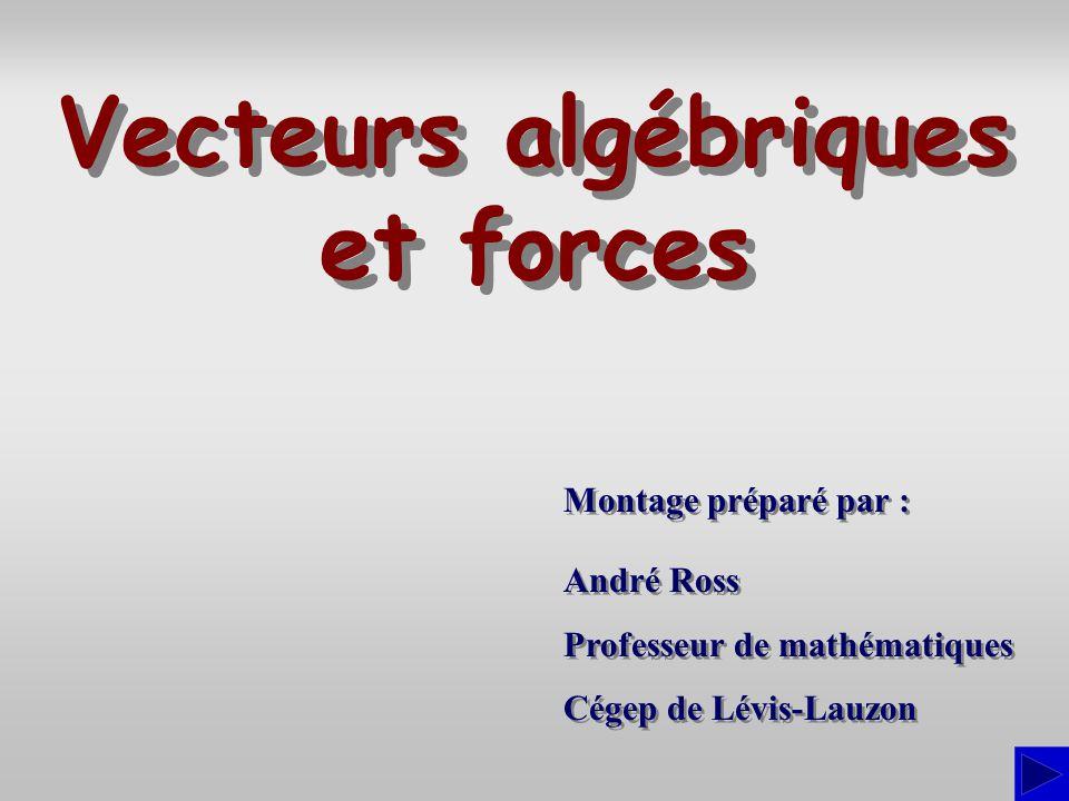 = (510  122°) + (720  114°) = (510 cos 122°; 510 sin 122°)+ (720 cos 66°; 720 sin 66°) = (22,59; 1090,26) = (a; (a; b)b) Exercice Un arpenteur a pris les notes suivantes pour décrire un parcours : S = = 1090,49  88,81° ou Puisque le vecteur est dans le premier quadrant,  =  = 88,81°.