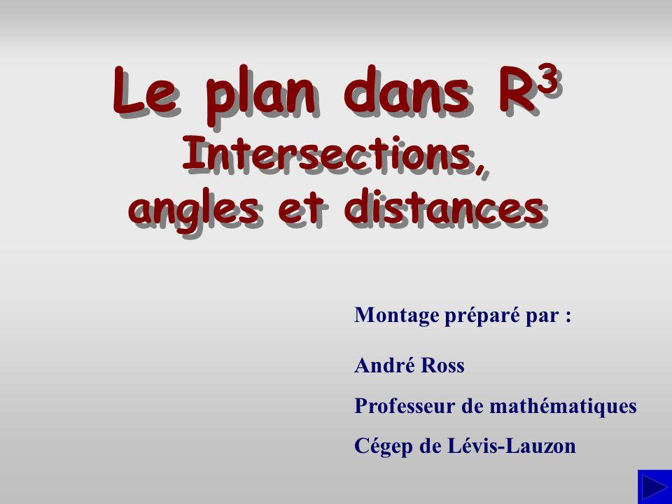Introduction Dans cette présentation, nous verrons comment déterminer les positions relatives de plans et comment utiliser les vecteurs et le produit scalaire pour calculer : l'angle entre deux plans, la distance d'un point à un plan, le point d'un plan le plus rapproché d'un point hors du plan.