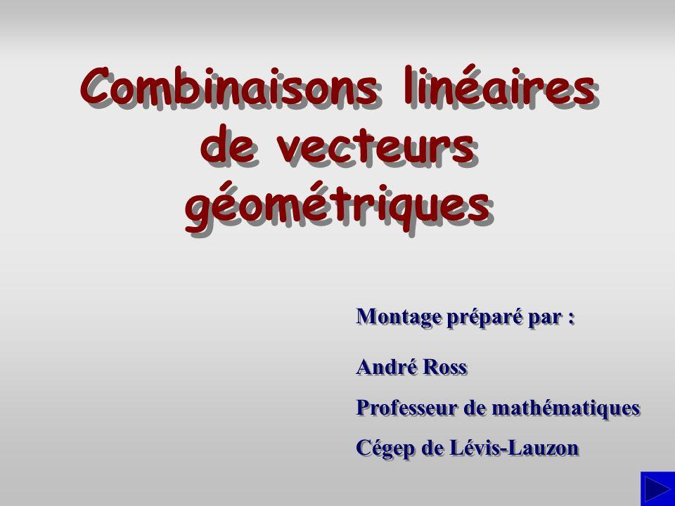 Montage préparé par : André Ross Professeur de mathématiques Cégep de Lévis-Lauzon André Ross Professeur de mathématiques Cégep de Lévis-Lauzon Combin