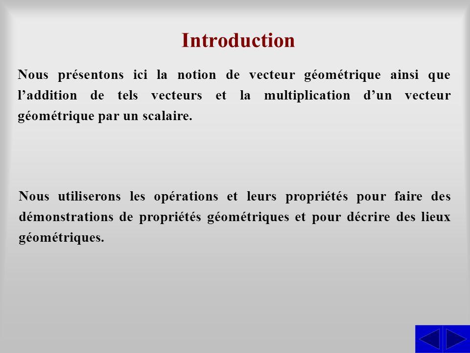 Nous présentons ici la notion de vecteur géométrique ainsi que l'addition de tels vecteurs et la multiplication d'un vecteur géométrique par un scalai
