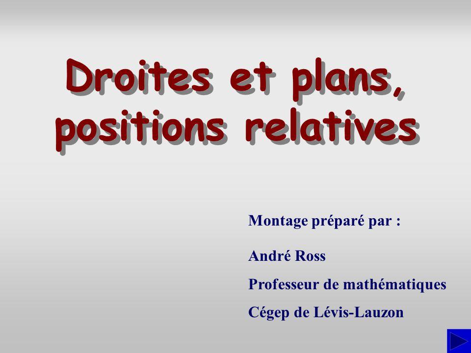 Montage préparé par : André Ross Professeur de mathématiques Cégep de Lévis-Lauzon Droites et plans, positions relatives Droites et plans, positions r