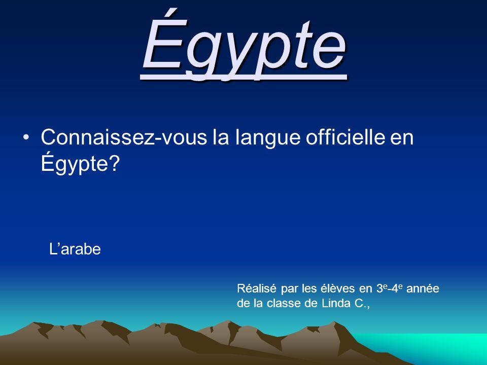 Égypte Connaissez-vous la langue officielle en Égypte.