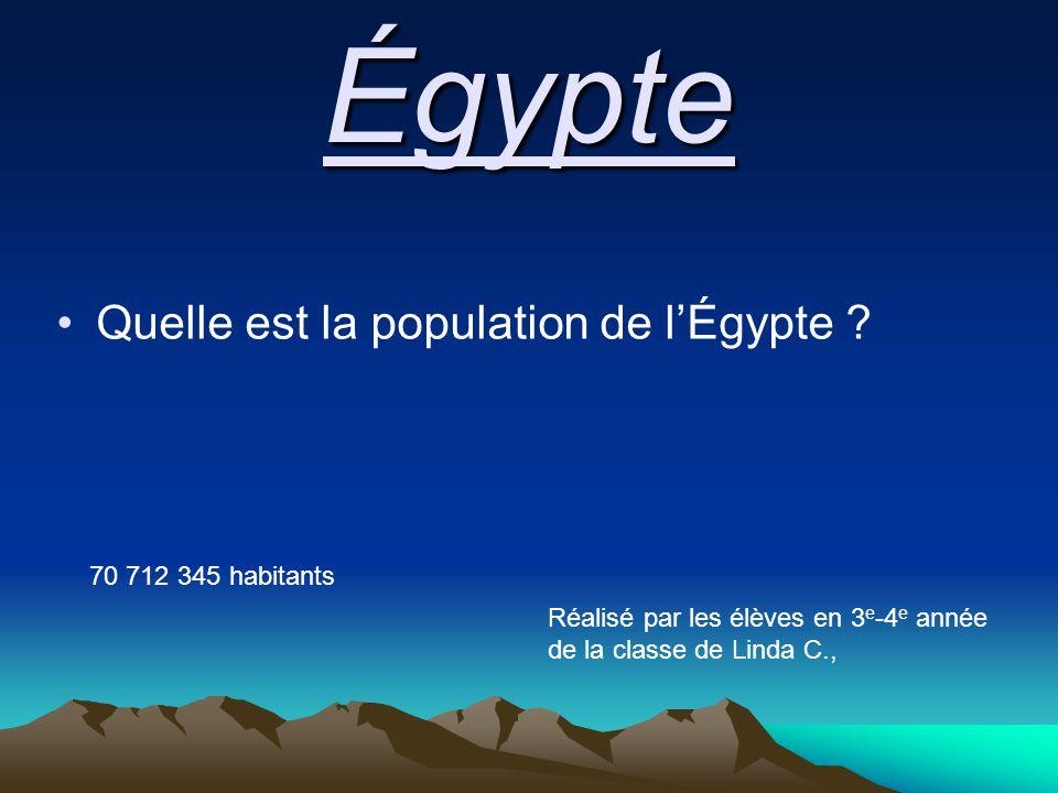 Égypte Quelle est la population de l'Égypte .