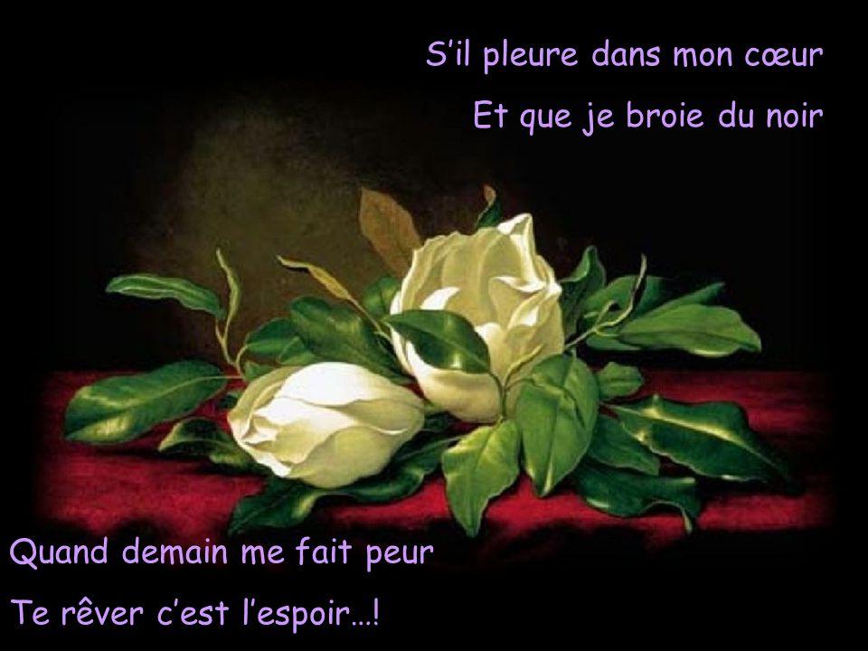 S'il pleure dans mon cœur Et que je broie du noir Quand demain me fait peur Te rêver c'est l'espoir…!