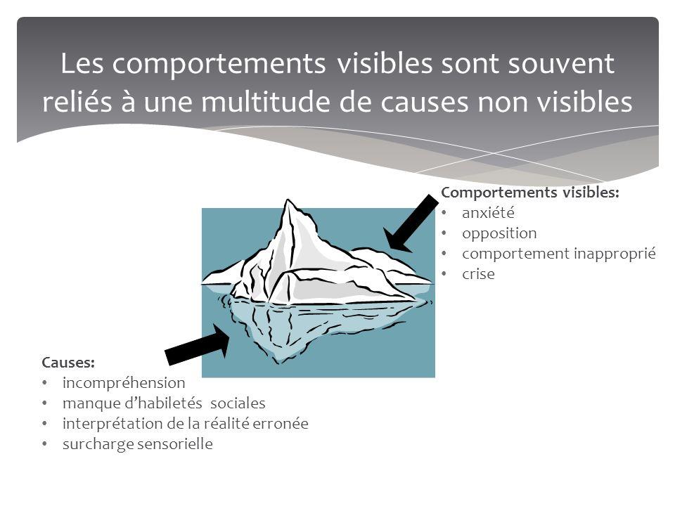 Les comportements visibles sont souvent reliés à une multitude de causes non visibles Comportements visibles: anxiété opposition comportement inapprop