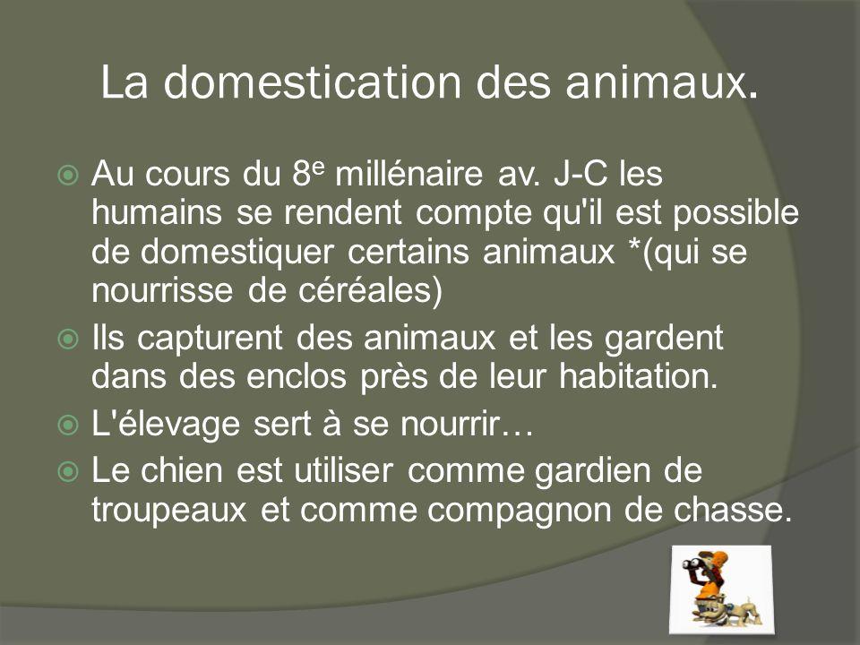La domestication des animaux.  Au cours du 8 e millénaire av. J-C les humains se rendent compte qu'il est possible de domestiquer certains animaux *(