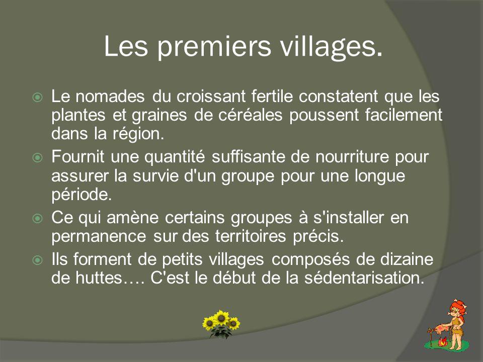 Les premiers villages.  Le nomades du croissant fertile constatent que les plantes et graines de céréales poussent facilement dans la région.  Fourn