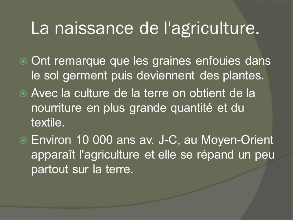 La naissance de l'agriculture.  Ont remarque que les graines enfouies dans le sol germent puis deviennent des plantes.  Avec la culture de la terre