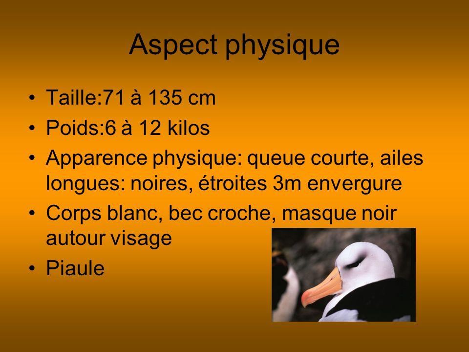 Aspect physique Taille:71 à 135 cm Poids:6 à 12 kilos Apparence physique: queue courte, ailes longues: noires, étroites 3m envergure Corps blanc, bec