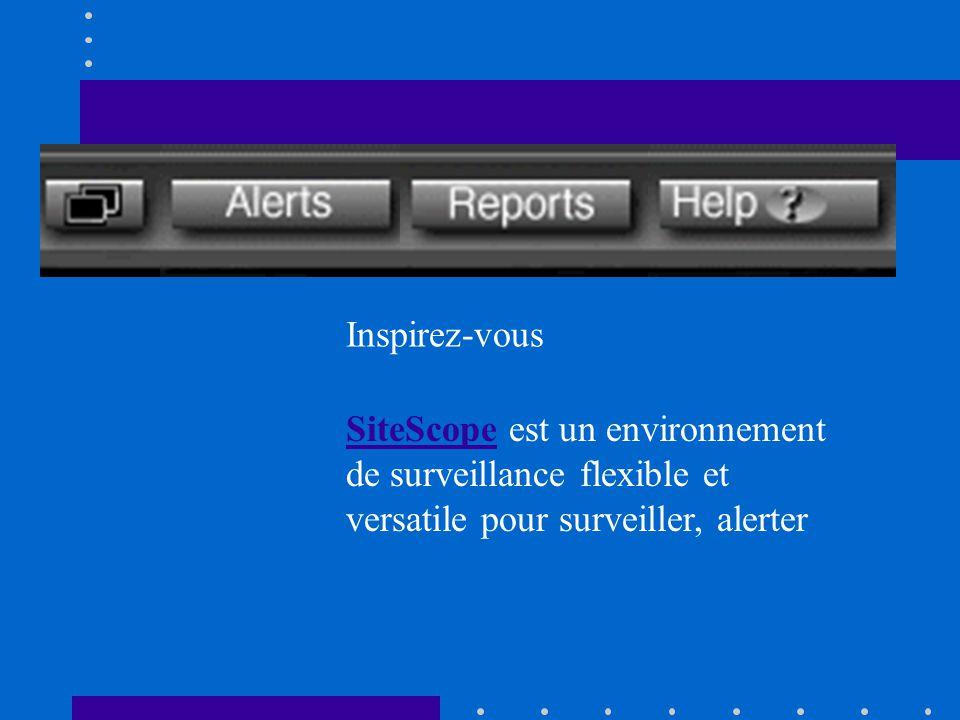 SiteScopeSiteScope est un environnement de surveillance flexible et versatile pour surveiller, alerter Inspirez-vous