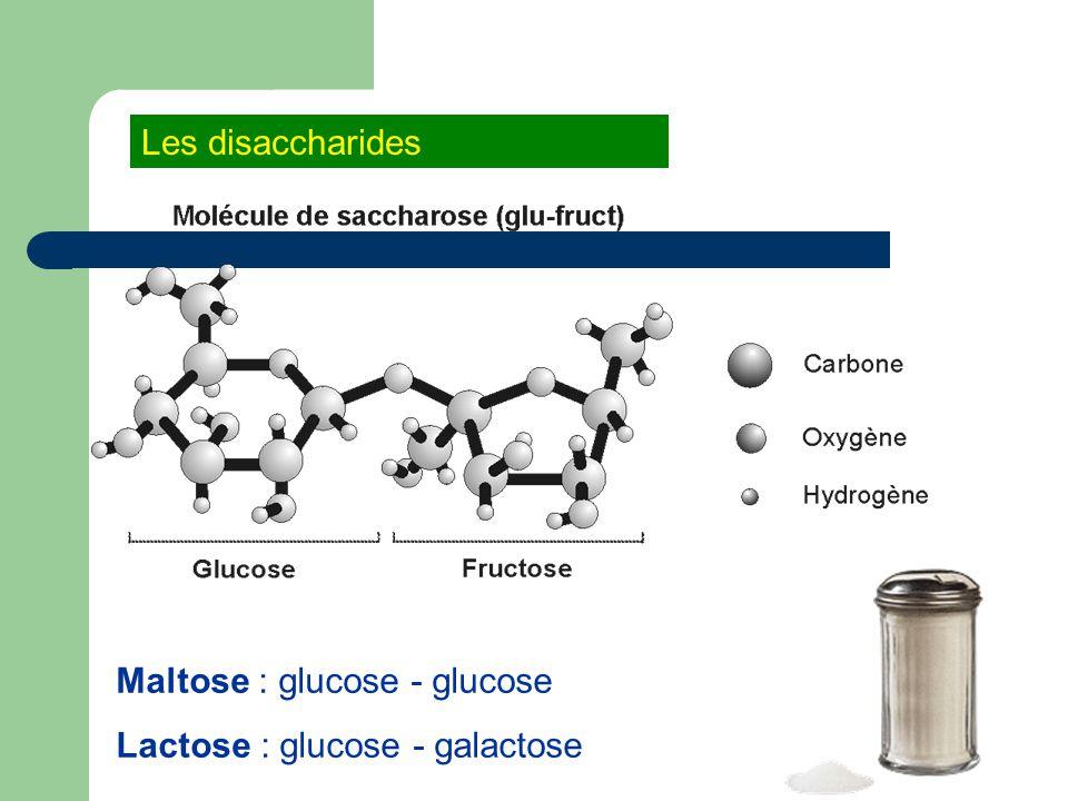 Maltose : glucose - glucose Lactose : glucose - galactose Les disaccharides