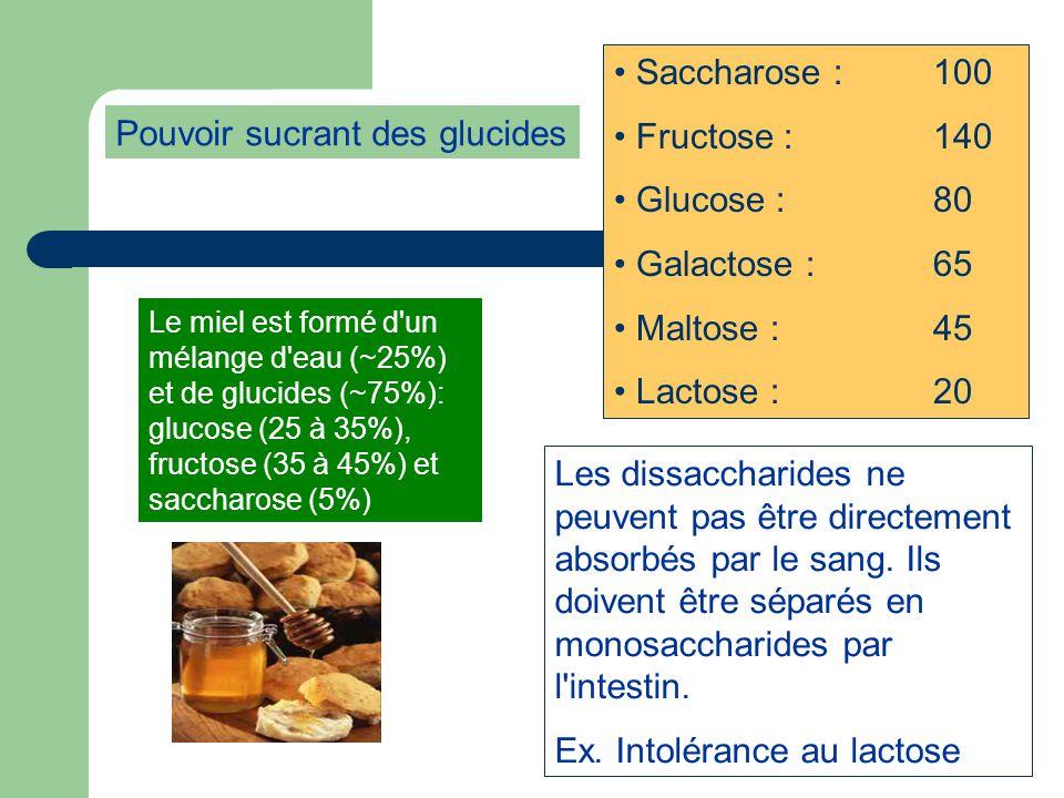 Pouvoir sucrant des glucides Saccharose :100 Fructose : 140 Glucose : 80 Galactose :65 Maltose :45 Lactose : 20 Les dissaccharides ne peuvent pas être directement absorbés par le sang.