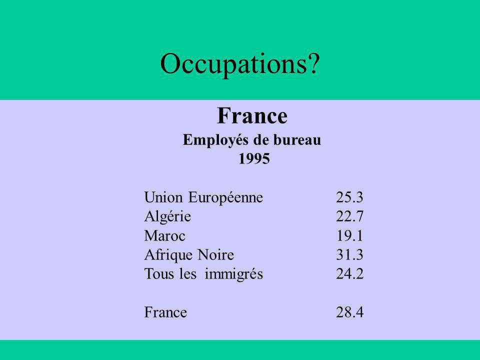France Employés de bureau 1995 Union Européenne25.3 Algérie22.7 Maroc 19.1 Afrique Noire 31.3 Tous les immigrés24.2 France28.4 Occupations