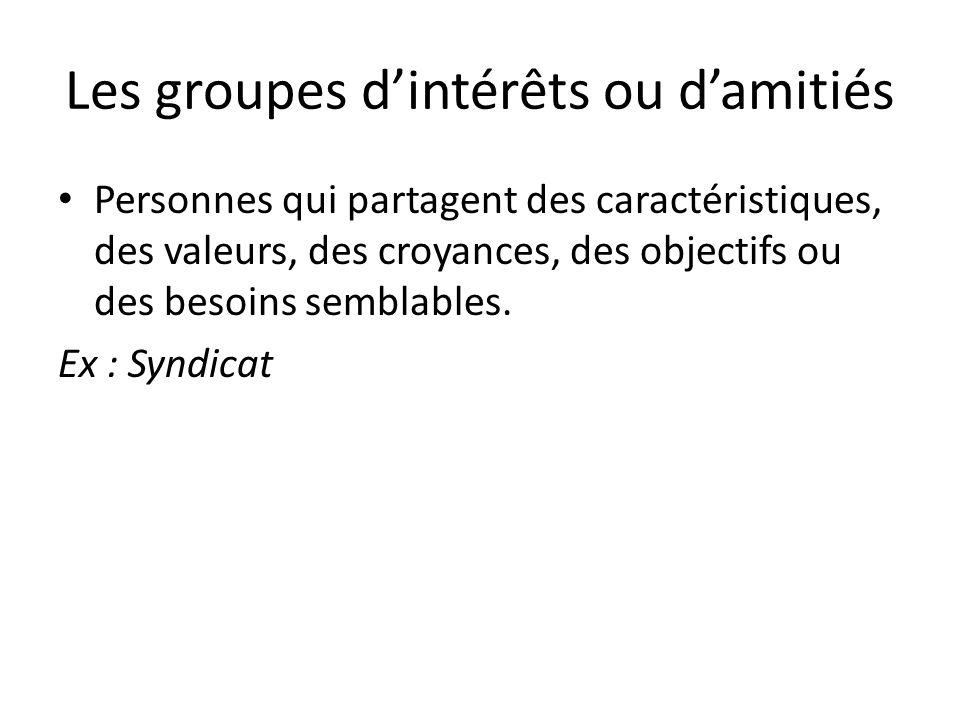 Les groupes d'intérêts ou d'amitiés Personnes qui partagent des caractéristiques, des valeurs, des croyances, des objectifs ou des besoins semblables.