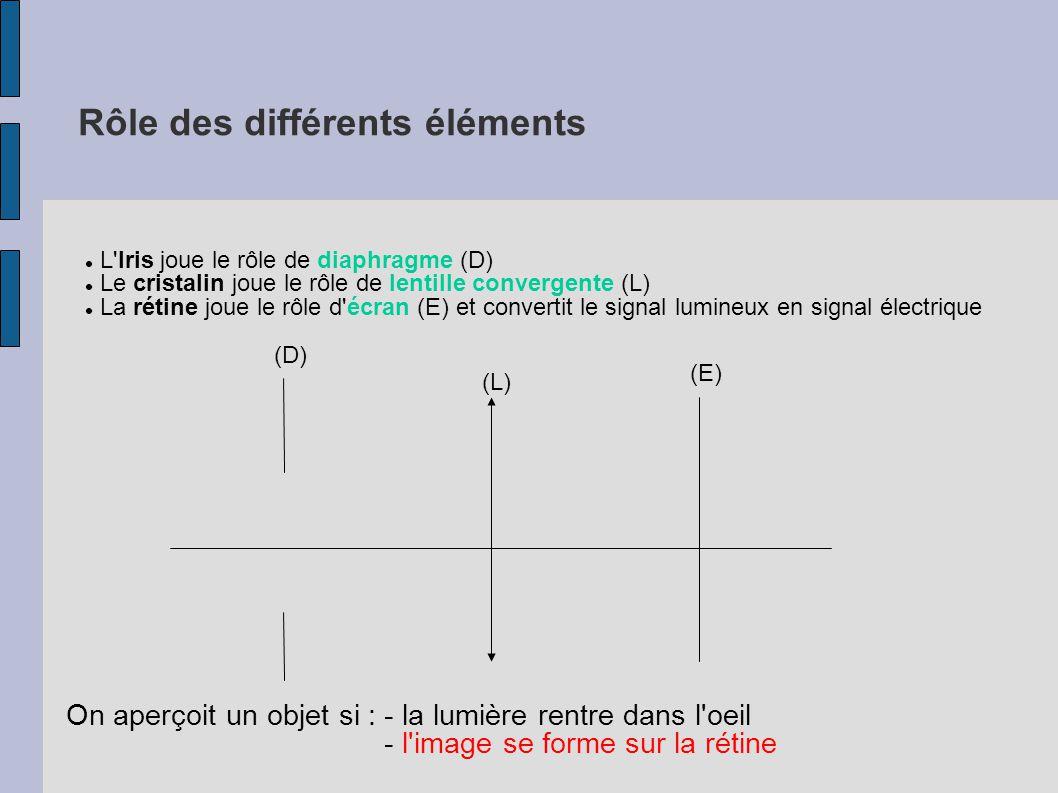 2 - Fonctionnement de l oeil normal a) vision normale de loin Oeil emmétrope = oeil sans défauts.