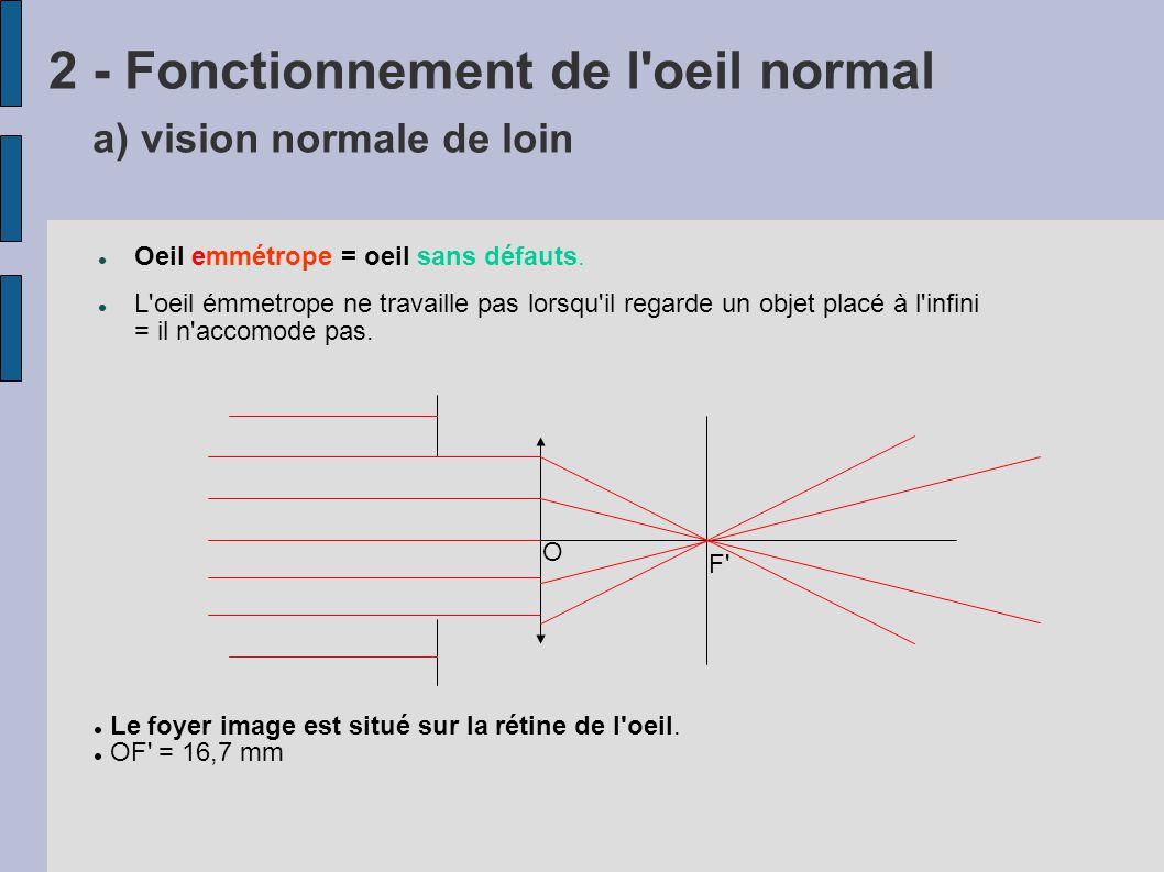 b) Vision normale proche Si le cristallin est une lentille classique (distance focale fixe) A B A B OF L image se forme derrière la rétine Hors on ne peut pas déplacer la rétine La vision sera donc toujours floue Le cristallin n est donc pas une simple lentille !!!