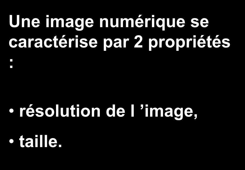Une image numérique se caractérise par 2 propriétés : résolution de l 'image, taille.