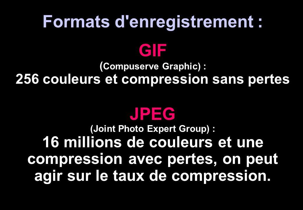Formats d'enregistrement : GIF ( Compuserve Graphic) : 256 couleurs et compression sans pertes JPEG (Joint Photo Expert Group) : 16 millions de couleu